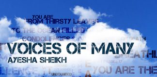 Ayesha Shiekh - Voices of Many