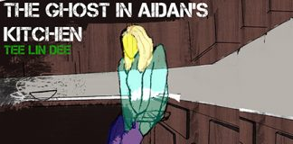 Tee Lin Dee - The ghost in aidans kitchen