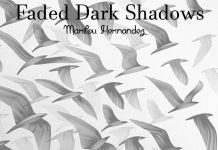 Faded Dark Shadows